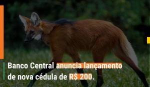 Nova Cédula de R$ 200 Lobo-guará